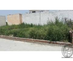 6 Marla Plot available for sale at best location In Amrit Vihar Jalandhar