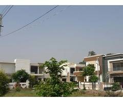 Golden Chance Buy Your Dream House At Low Price In Jalandhar