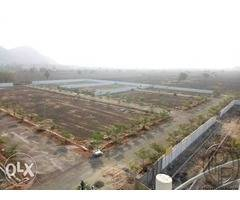 Apcrda approved layout in our amaravati