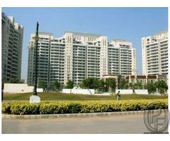 Apartments for lease in DLF Aralias