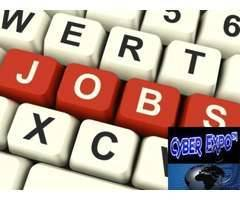Online /Offline Data Entry jobs ad posting jobs (Daily payment)